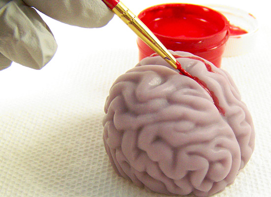 use a small artist's brush to get the paint into the crevices of the brain