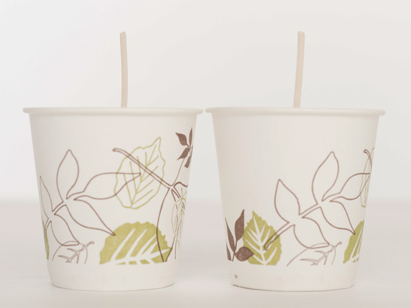 wicked dixie cups