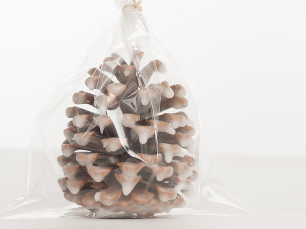 learn how to make fire starters from pine cones