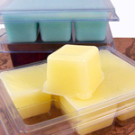 Travel Soaps in Clamshell Molds