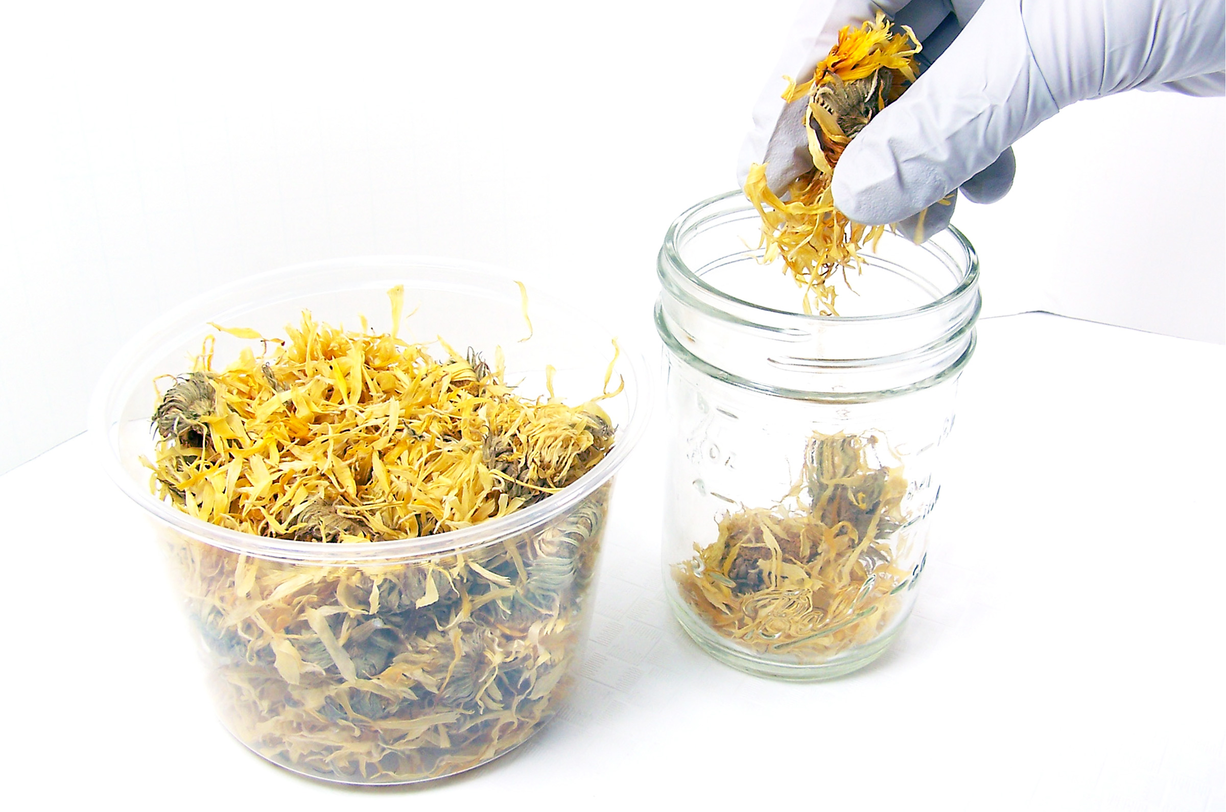 fill jars with dried herbs